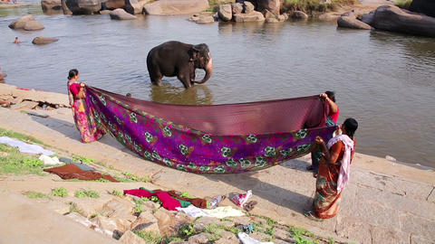 HAMPI, INDIA - APRIL 2013: Elephant wading in rive Stock Video Footage