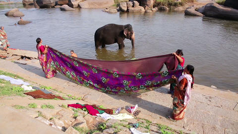 HAMPI, INDIA - APRIL 2013: Elephant wading in rive Footage