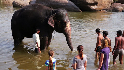 HAMPI, INDIA - APRIL 2013: People and elephant bat Stock Video Footage