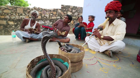 JAIPUR, INDIA - APRIL, 2013: Local cobra enchanter Stock Video Footage