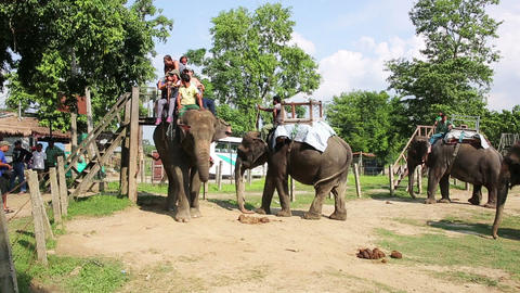 CHITWAN, NEPAL - JUNE 2013: Riding on elephants ba Stock Video Footage