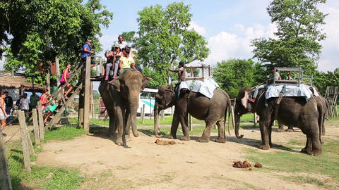 CHITWAN, NEPAL - JUNE 2013: Riding on elephants ba Footage