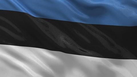 Flag of Estonia seamless loop Stock Video Footage