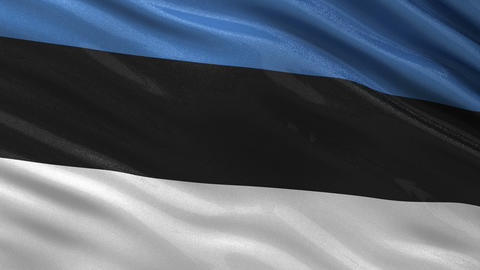 Flag of Estonia seamless loop Animation