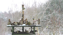 Bird Feeder at winter time Stock Video Footage