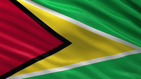 Flag of Guyana seamless loop Animation