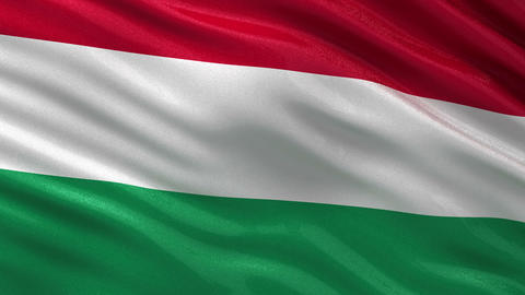 Flag of Hungary seamless loop Animation