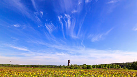 Summer landscape. Time Lapse. 4K Footage