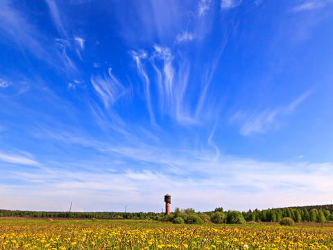 Summer landscape. Time Lapse. 640x480 Footage