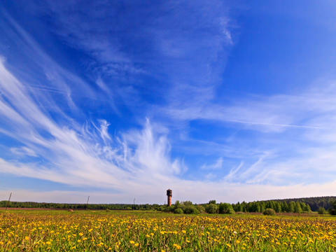 Summer landscape. Time Lapse Stock Video Footage