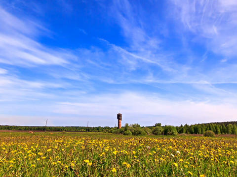 Summer Landscape. Time Lapse stock footage