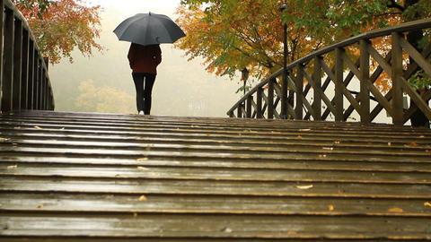 Rainy weather. A woman under an umbrella walks acr Footage