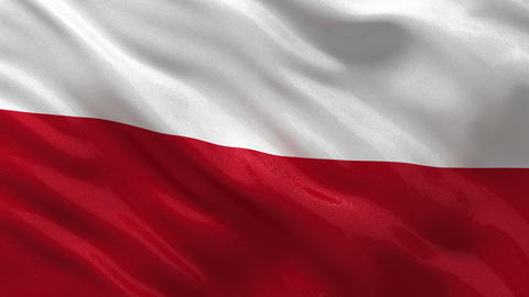 Flag of Poland seamless loop Stock Video Footage