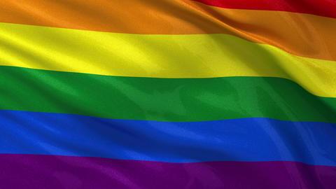Rainbow flag seamless loop Stock Video Footage