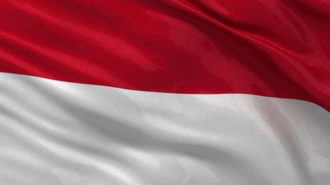 Flag of Monaco seamless loop Stock Video Footage