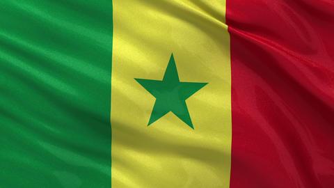 Flag of Senegal seamless loop Stock Video Footage