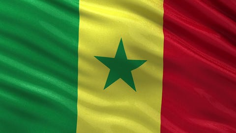 Flag of Senegal seamless loop Animation
