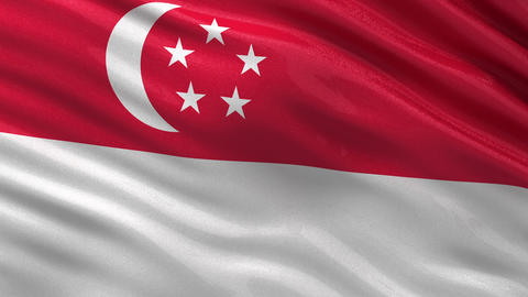 Flag of Singapore seamless loop Animation