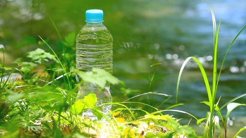 Pet Bottle Of Pure Drink In Forest stock footage