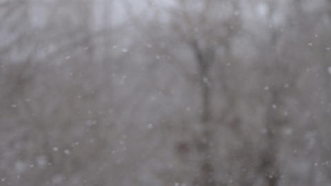 Winter. Snowfall. Snow. Christmas. Snow flakes Stock Video Footage