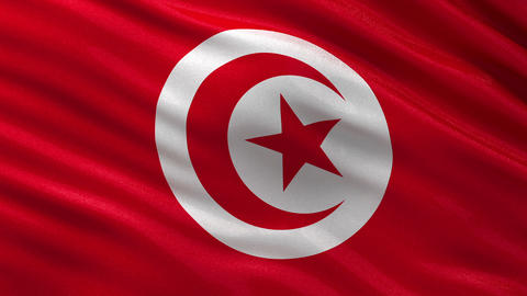 Flag of Tunisia seamless loop Animation