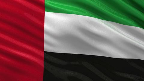 Flag of the United Arab Emirates seamless loop Animation
