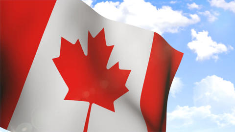 Waving Flag of Canada Stock Video Footage
