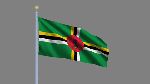 Flag of Dominica Stock Video Footage
