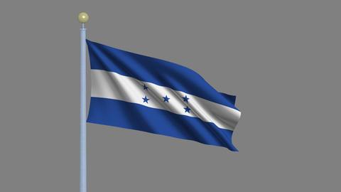 Flag of Honduras Stock Video Footage