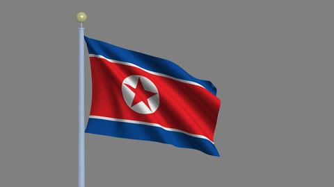 Flag of North Korea Animation
