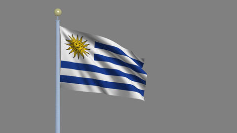 Flag of Uruguay Animation