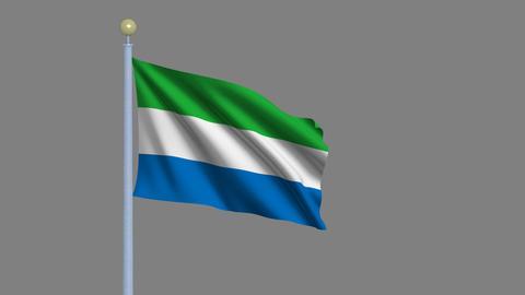 Flag of Sierra Leone Stock Video Footage
