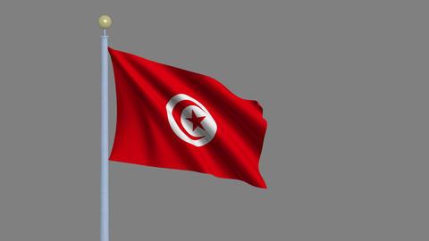 Flag of Tunisia seamless loop Animation