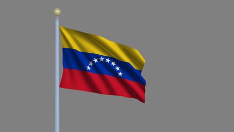Flag of Venezuela seamless loop Stock Video Footage