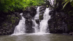 Tropical Waterfall Stock Video Footage