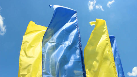 blue and yellow flags Footage