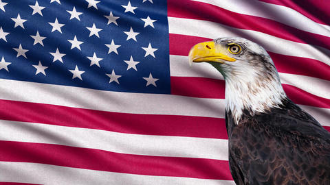 4K USA flag with eagle seamless loop Animation