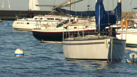 Sailing boats docked in Chicago Footage