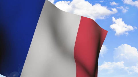 Waving Flag of France Stock Video Footage