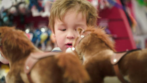 Little boy looking at the toy horses in the shop Stock Video Footage