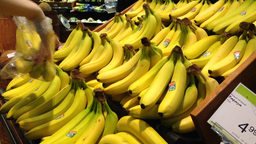 Woman selecting fresh banana in grocery store Stock Video Footage
