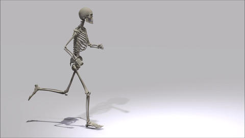 Running Skeleton Animation