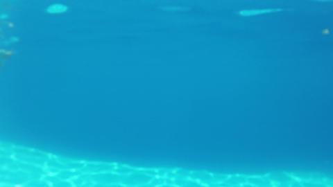 Pretty girl in bikini swimming in the pool underwa Stock Video Footage