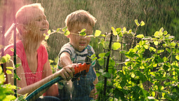 Mother helping son to water the garden with hose Footage