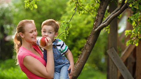 Mother feeding her son with an apple in the garden Footage