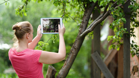 Young woman taking pictures of nature scenes with  Footage
