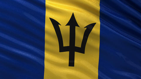 Flag of Barbados seamless loop Animation