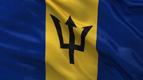 Flag of Barbados seamless loop Stock Video Footage