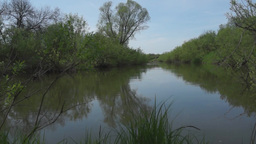 Tranquil summer landscape at the small river Stock Video Footage