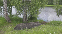 Summer landscape at a river with an old boat Footage